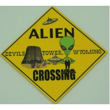 Alien Crossing Magnet
