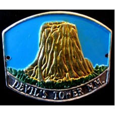 Devils Tower Walking Stick Emblem
